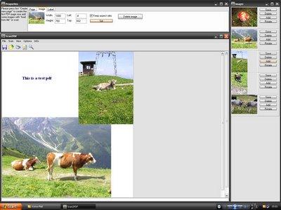 pdf-scannen