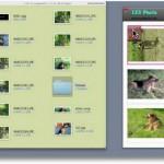 Fotos auf DinA4 Blatt anordnen und Drucken – Freeware
