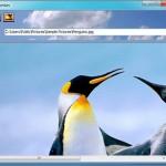 Bilder und Fotos in Icons umwandeln – Freeware