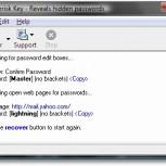 passwort-anzeigen
