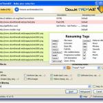 Ganze Webseiten runterladen – DownThemAll